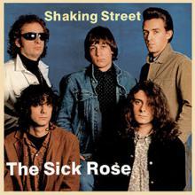 "copertina THE SICK ROSE ""Shaking Street"""